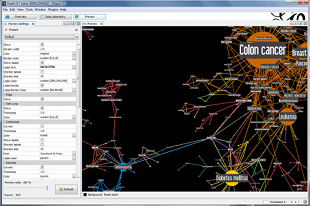 preview of gephi using a map for colon cancer and interrelated terms